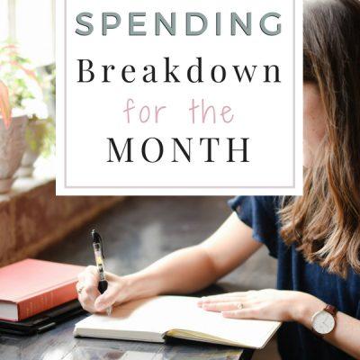 Spending Breakdown for the Month