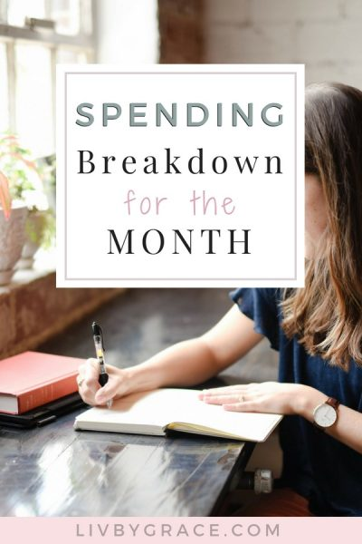 Spending Breakdown for the Month