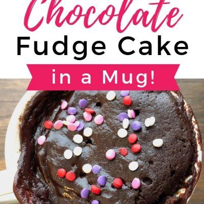 Easy Chocolate Fudge Cake in a Mug