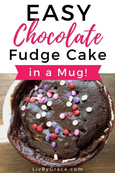Easy Chocolate Fudge Cake in a Mug